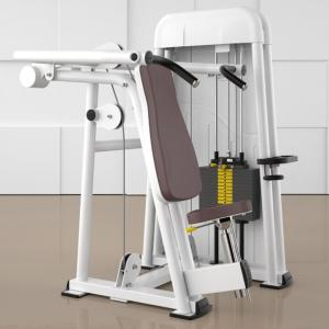 Shoulder Press Ergo-Fit