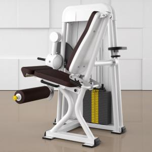Leg extension Ergo-Fit